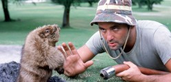 Caddy vs Gopher...i'm betting on the gopher