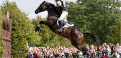 Horses are a part of Ontario's heritage. For example, our area was represented at the recent London Olympics by a locally-bred thoroughbred – Exponential. image courtesy: horsejunkiesunited.com