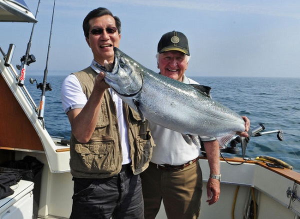 Minister Chan with a fine 26lb Ontario salmon he landed in July, 2013. image: Toronto Sun (see supplemental below for story) CP
