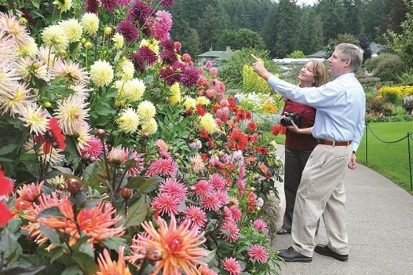 """Prettiest street? Enter Canadian Garden Council's """"Best Garden Street"""" Contest"""