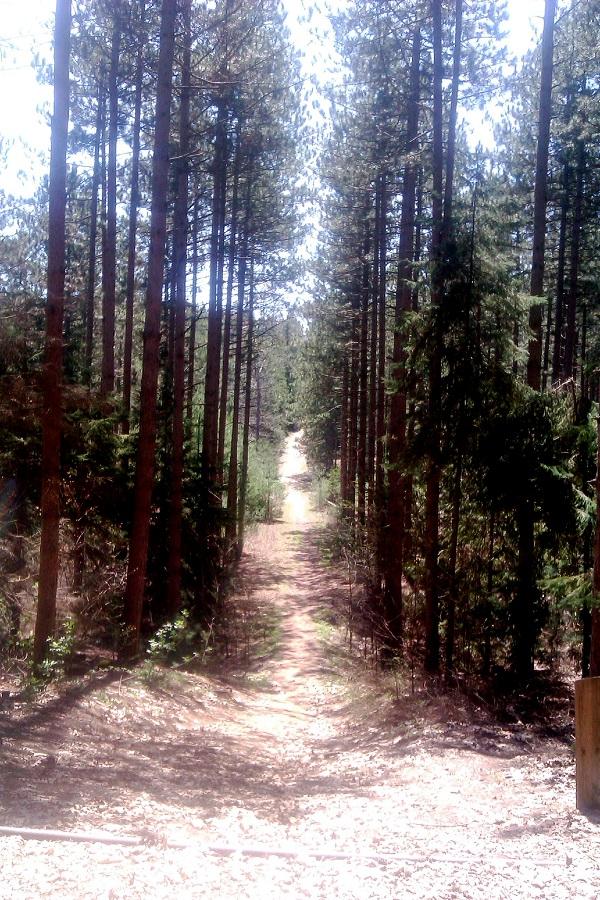 Prehistoric Trails Across Farm lands