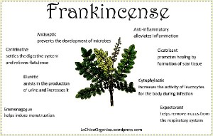 CLICK me to discover more about Frankincense