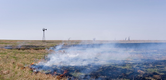 Controlled burn planned to restore Grand River Watershed tallgrass prairie