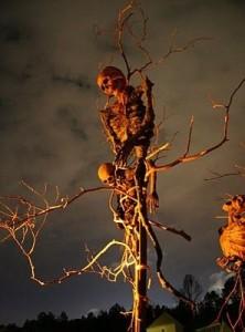 Skeleton Scarecrows