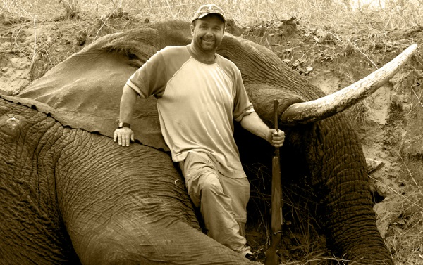 Legal Elephant Hunting in Mozambique