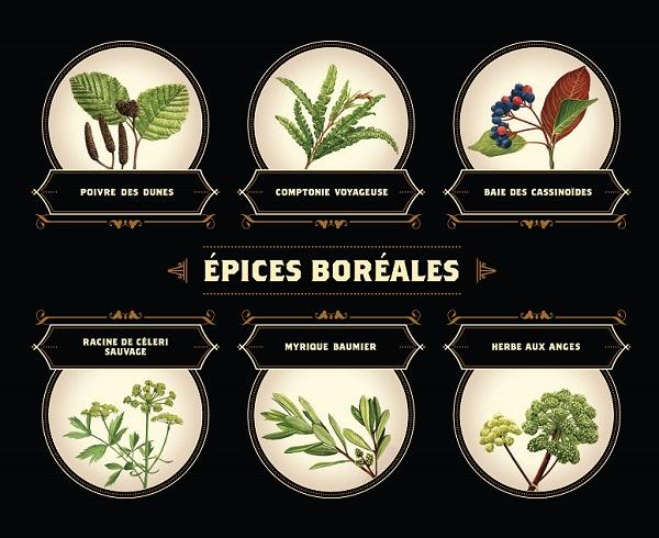 Epices Boreales