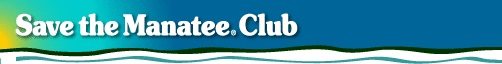 Save The Manatee Club Ribbon