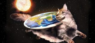 FlatEarth Cat