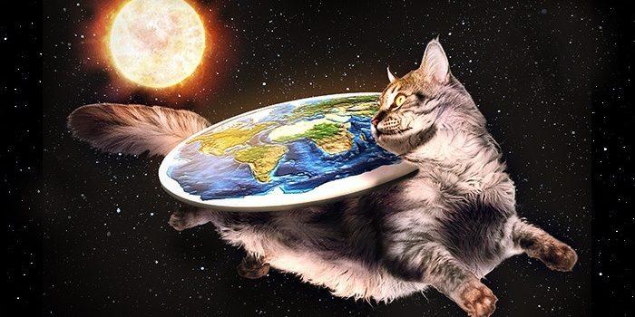 FlatEarth Cat