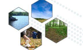 Made In Ontario Environment Plan